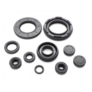 RD250, RD350 & RD400 Oil Seal Kit